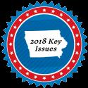 key-issues-125